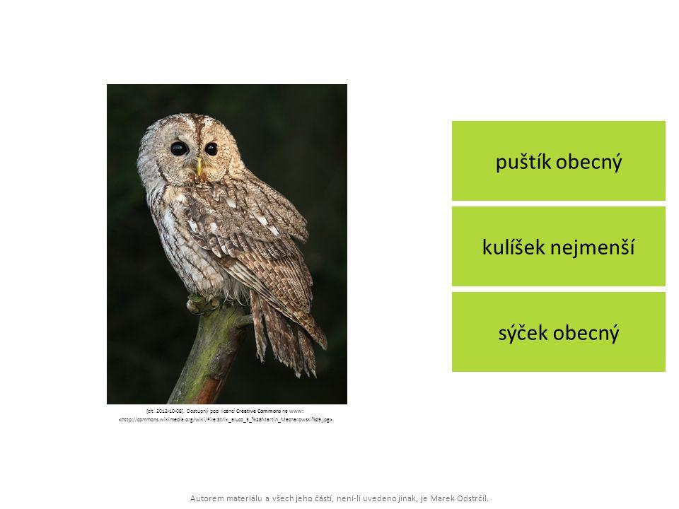 [cit. 2012-10-08]. Dostupný pod licencí Creative Commons na www: